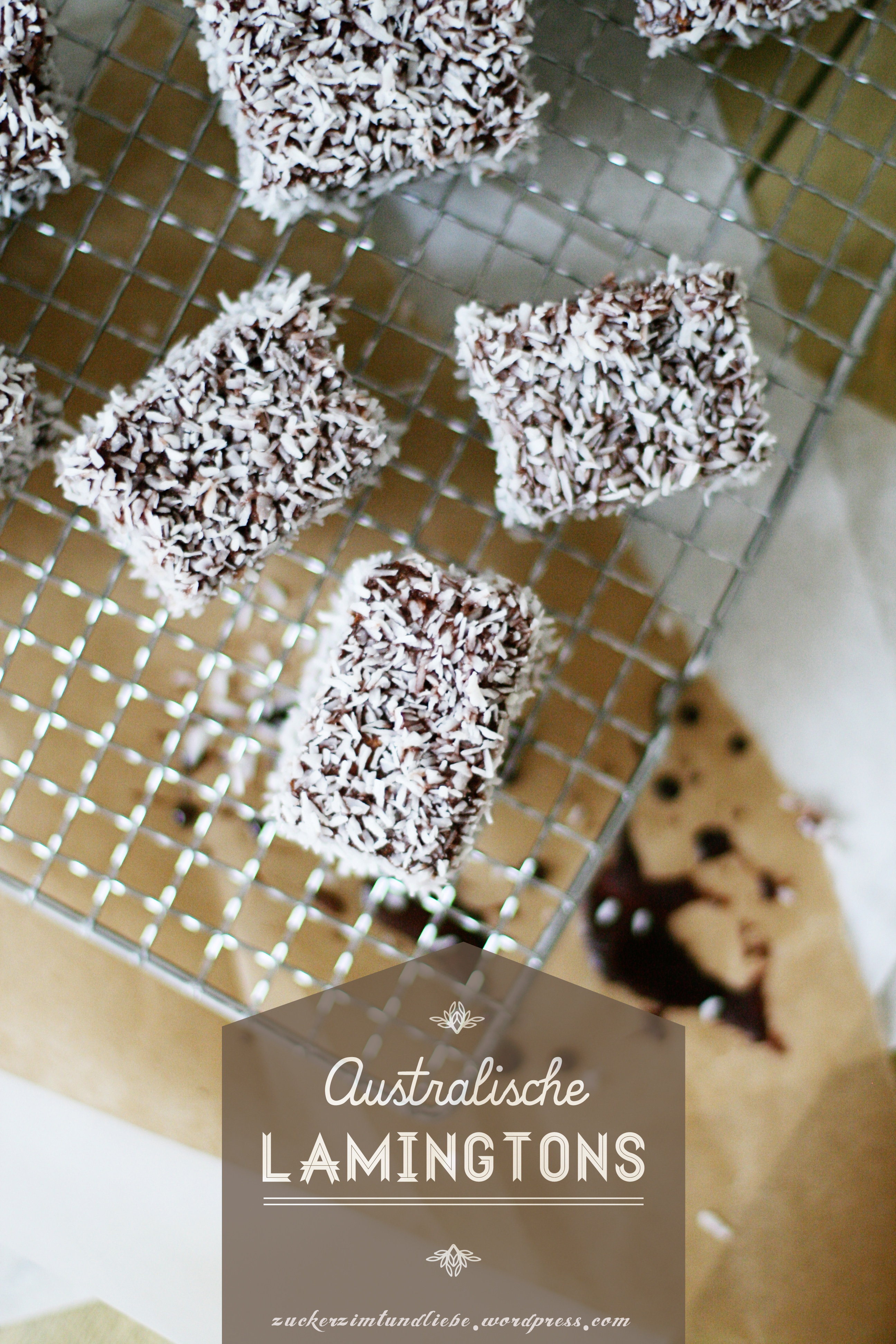 Lamington rezept recipe Kokoskuchen Schokokuchen Foodstyling australische rezepte zuckerzimtundliebe foodstylist