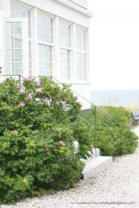 Röllchen-Garten