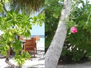 zuckerzimtundliebe_maldives_19