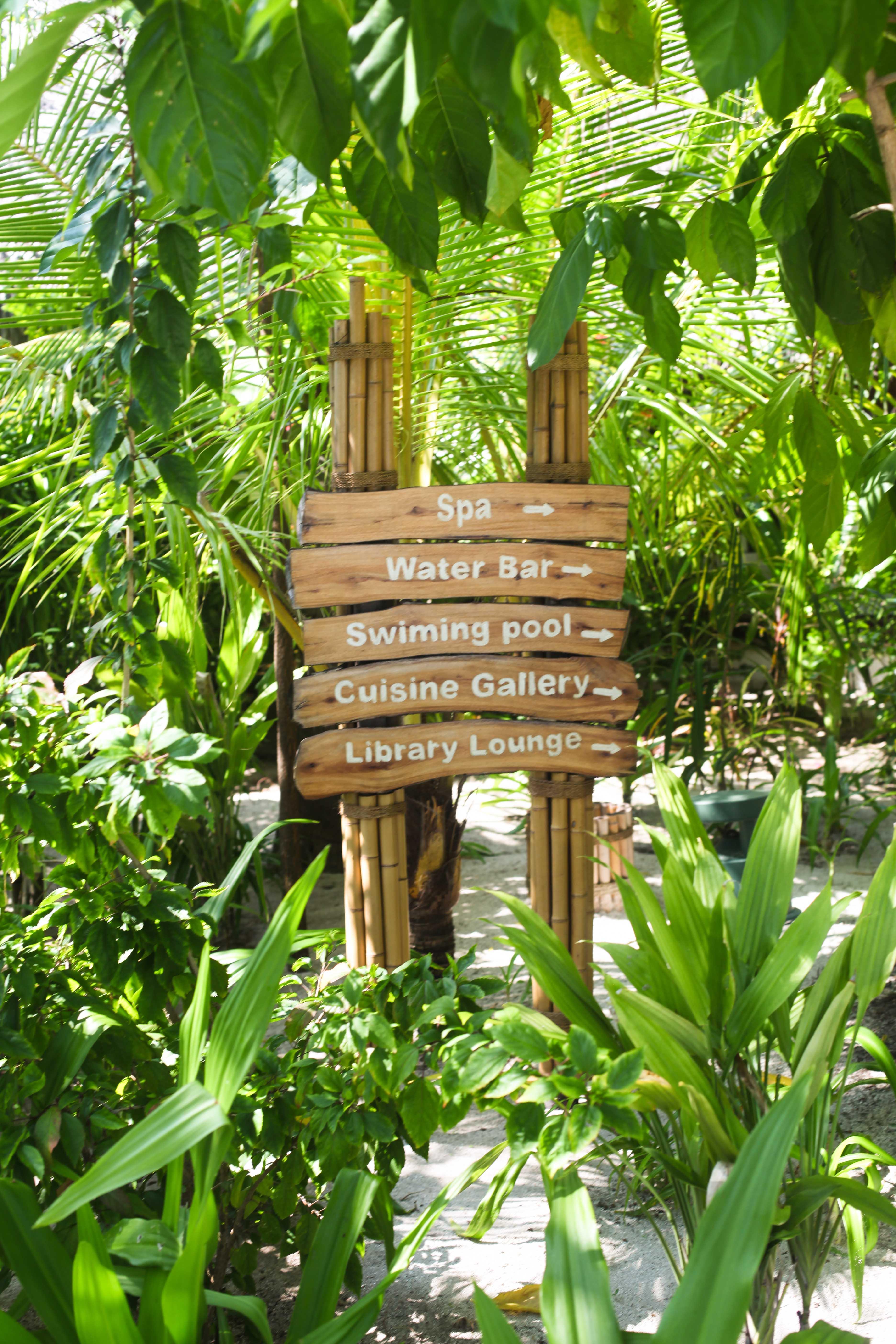 Condor Cocos Cookies Maafushivaru Zuckerzimtundliebe Malediven Trauminsel-9