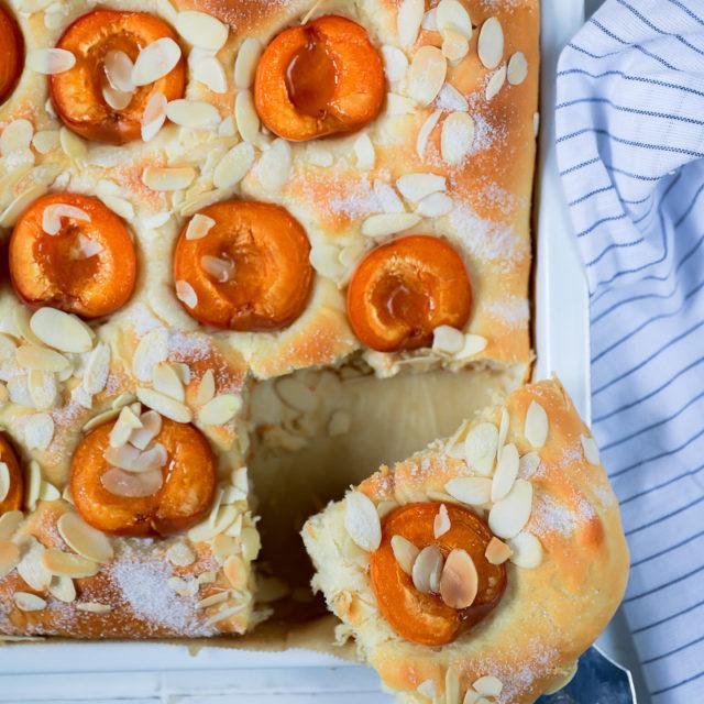 Aprikosen Butterkuchen Rezept Butterkuchen wie vom Bäcker aus Hefeteig von zucker zimt und liebe foodblog backblog foodstyling blechkuchen food photography sheet cake apricot cake marillenkuchen aprikosenkuchen