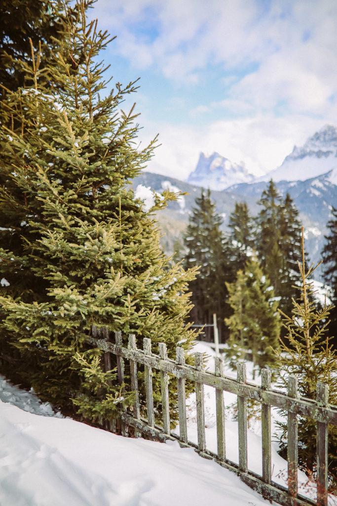 Rosalpin Dolomiti Brixen Plose Wellness hotel Ausblick