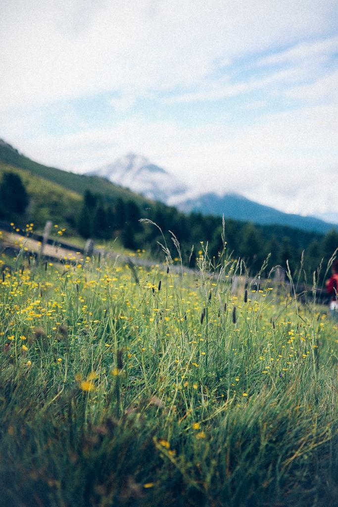 Meetmerano Berge Meraner Land Aussicht Südtiroltipps Urlaub in den Bergen Bergwiese zuckerzimtundliebe